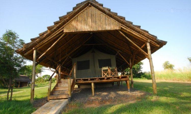 Bwana Tembo Safari Camp