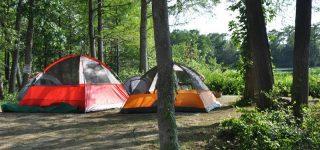 Uganda Wildlife Campsite
