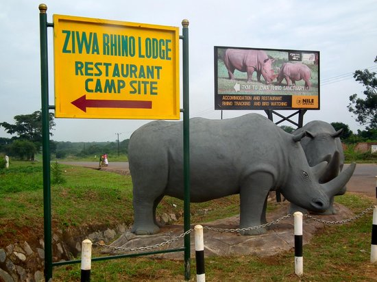 Ziwa Rhino Camp