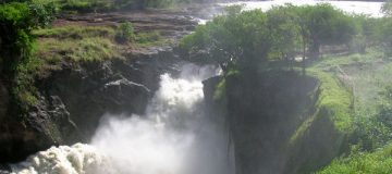 2 Days Murchison Falls Wildlife Safari