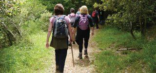 Hiking and Nature walks