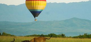 Hot Air Balloon Safaris