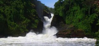 Save Murchison Falls