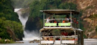 6 Day Ziwa, Murchison falls and Bwindi Gorilla Trekking Tour